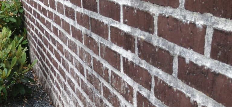 rensning af facade før